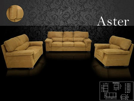 Aster - LN